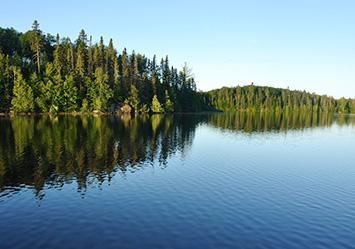 Douglas Lake Homes